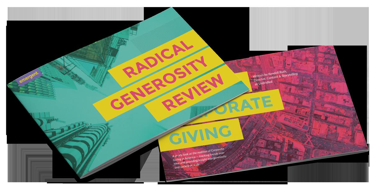 Radical Generosity Review Mockup 1
